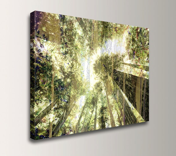 """Nature Photography - Mixed Media - Photo Collage - Green Wall Art - """" Forest Light """""""