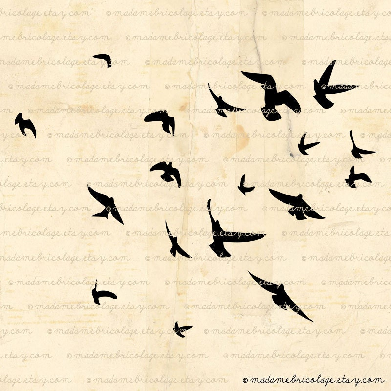 Flock of Birds Png Flock of Birds Flying Digital Image Download For Iron on Transfer