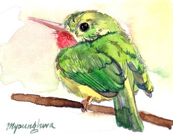 ACEO Limited Edition - Jamaica Tody, in watercolor