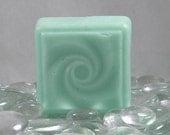 Vanilla Mint Solid Shampoo Bar Syndet