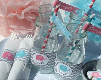 Gender Reveal Party Decorations Baby Shower Pink Blue Elephant DIY Printable- Instant Download