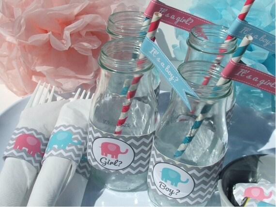 Gender Reveal Party Decorations Baby Shower Pink Blue Elephant DIY Printable- Instant Download