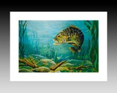 "Fishing ""River Bass""  Note Card"