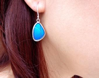Real Butterfly Earrings - Sterling Silver Butterfly Earrings - Silver Butterfly Wing Earrings - Morpho Didius Butterfly