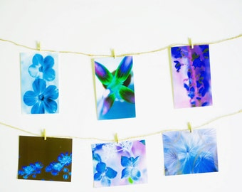 Art Postcards, 4x6 inches, 6 cards, floral, macro, flowers