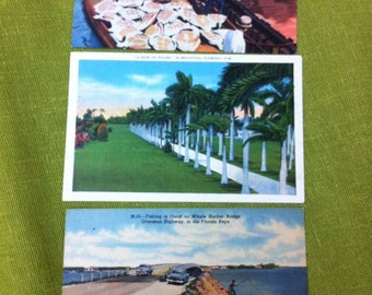 1930s Florida in Vintage Linen Paper Sunshine State Glory Set of 3:  one Unused, two with Stamps