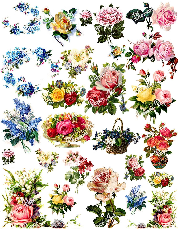 Simplicity image in free flower printable