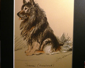 Signed mounted 1937 Lucy Dawson Johnnie Keeshond dog plate/print Unique gift for any dog lover