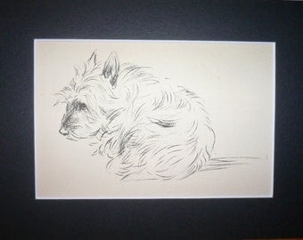 CAIRN TERRIER Vintage Mounted 1936 'Mac' Lucy Dawson Little Cairn terrier puppy dog plate print Unique birthday anniversary gift