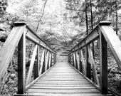 8x10 Appalachian Where Are You Going Original Photograph Black and White Fine Art Print Bridge Forest Scene Nature Trees Picture Artwork