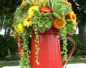 Succulent bouquet-Yellow, orange, green bouquet