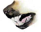 Hyena - archival print