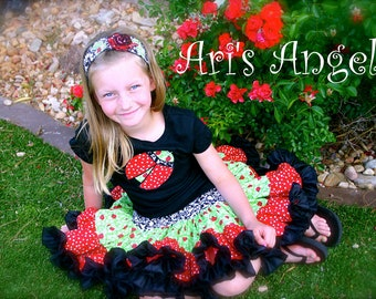 A Beautiful Ari's Angels Lady Bug Applique Shirt and Full Twirling Skirt