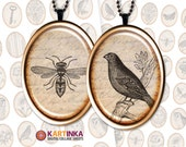 AGED APHEMERA 30x40mm 22x30mm 18x25mm 13x18mm Oval Images Digital Collage Sheet Printable download for Earrings Rings glass resin pendants