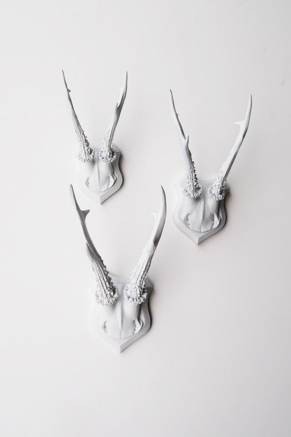 Faux Deer Antler Skull Caps - Faux Taxidermy - Set of 3 White Resin Deer Caps - Mounted Deer Antlers