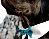 Handmade Dog Bow Tie Collar Dog Ring Bearer