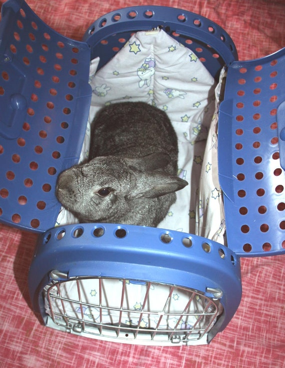 reserved for Minnesota Companion Rabbit Society - Miffy Bun-velope - soft carrier liner for rabbits