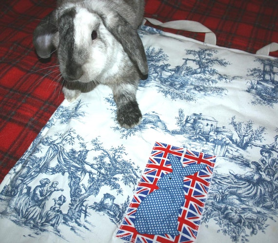 soft carrier liner for rabbits quilted blue and white toile cotton fabric - the Bun-velope