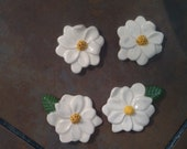 Magnolia Magnets