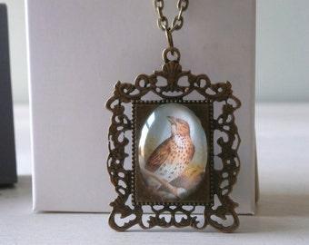 Ornate Frame Victorian Bird Pendant Necklace Jewellery