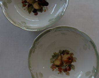 Beautiful China Bowls, set of two, Made in Germany.