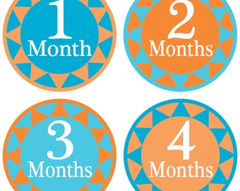 Monthly Baby Stickers - Monthly Stickers - Baby Milestone Stickers