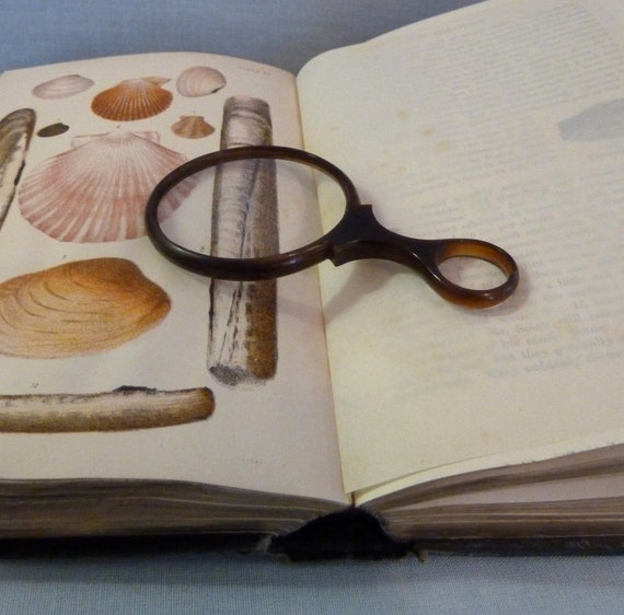 Victorian Horn Magnifying Glass