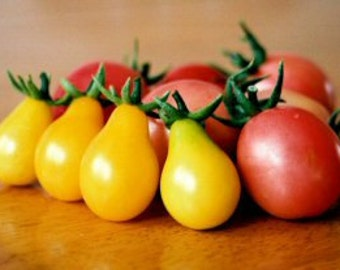 Heirloom, Yellow Pear Tomato, Garden Seeds, Great in Salads, 25 Seeds