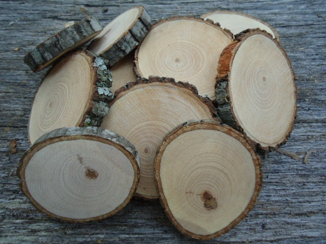 12 qty 2 hickory rustic wood slices for crafts candles