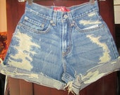 size 1 LEVI High Waist Distressed Shorts 25 in Waist