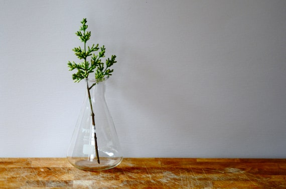Vintage laboratory beaker Pyrex retro school science glass conical flask 100ml