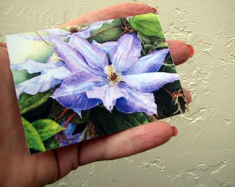 ACEO Fine Art Print / Of Original Watercolor / By Patricia Heyer / Of A Clematis Flower / Size 2.5x3.5 Inches