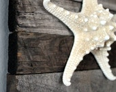 Coastal Decor Driftwood Art of Starfish Beach Decor