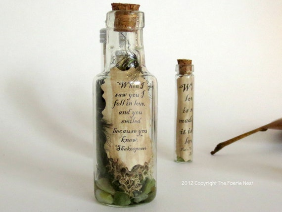 When I Saw You.... Message in a Bottle Love Note Inspirational Quote Message Miniature Terrarium Love Note in a Bottle Lovers Gift