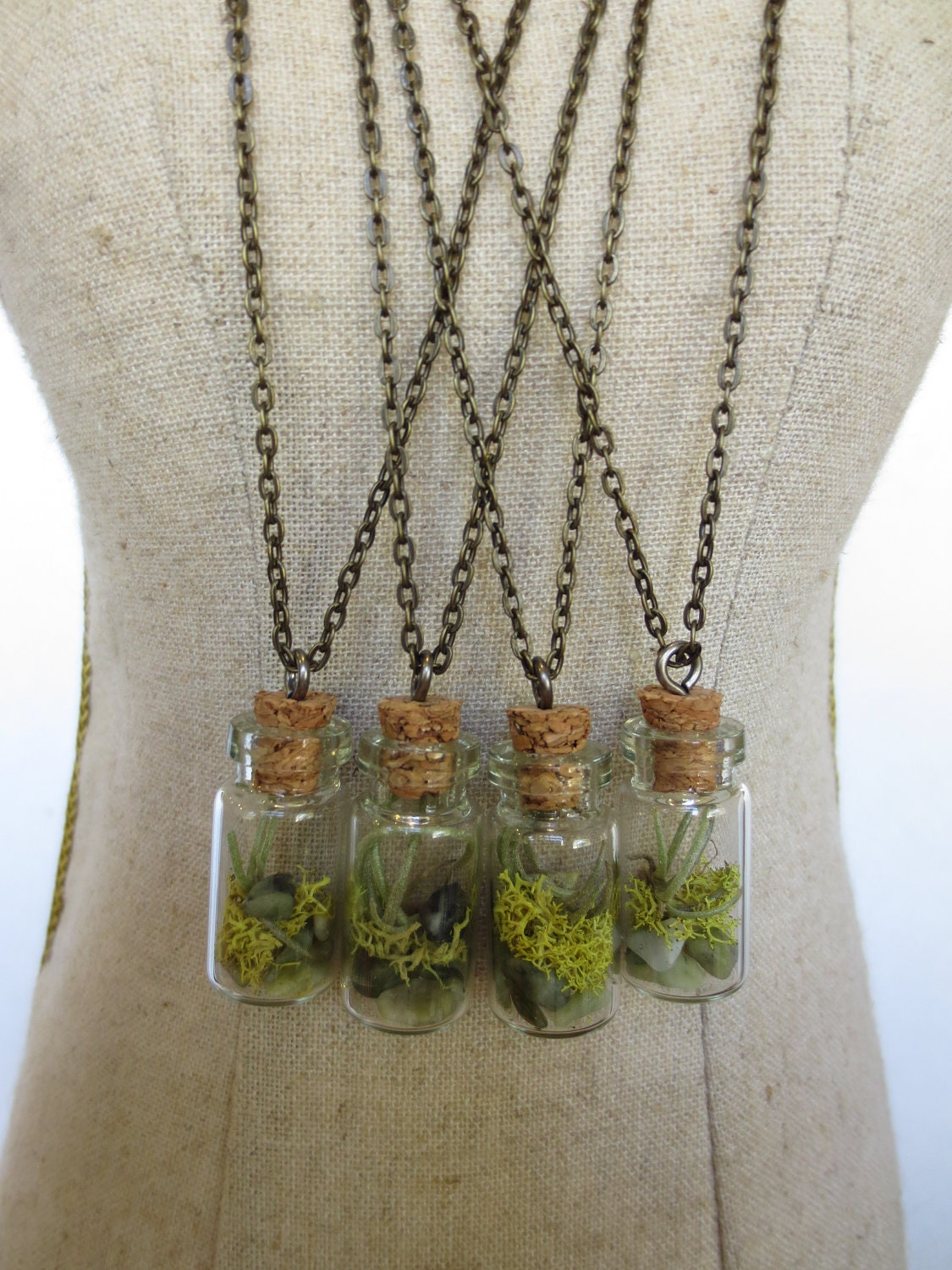 You are my world tiny live terrarium necklace by faerienest for Gemsprouts tiny plant jewelry
