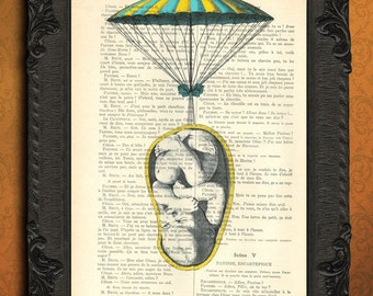 Baby prints, embryo foetus baby parachute, flying baby vintage home decor dictionary print, unborn baby, recycled upcycled, nursery decor