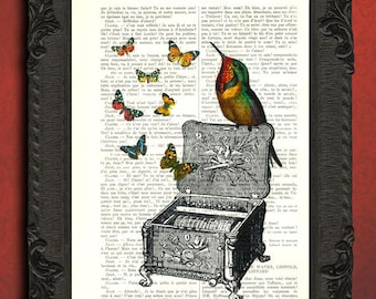 Hummingbird on music box and butterflies art print collage - upcycled recycled dictionary art print - vintage digital collage