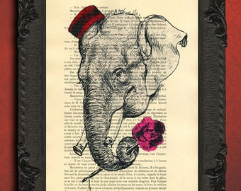 elephant flowers print elephant pink rose illustration romantic illustration