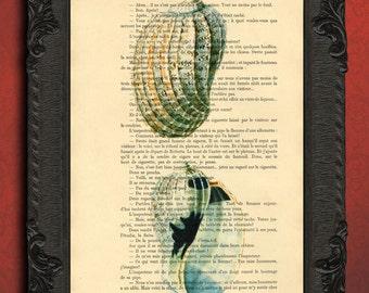 Shell Print Seashell illustration white seashell art