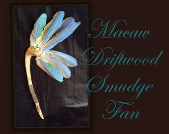Macaw Driftwood Smudge Fan