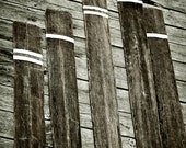 Oars on the Dock -  Photography -  8x12