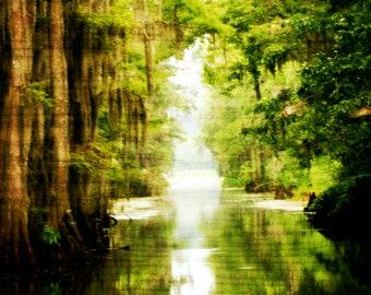 Caddo Lake in Louisiana