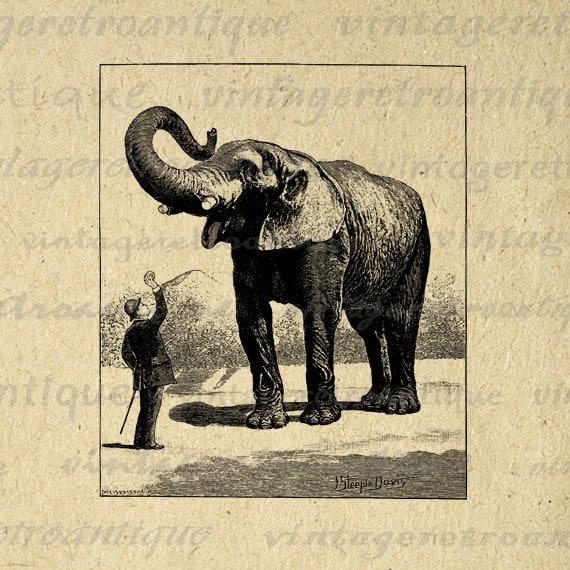 vintage elephant clip art - photo #19