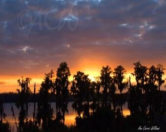 Cypress Lake at Sunset (PR) (canvas)