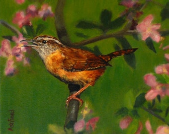 Carolina Wren, Giclee canvas print