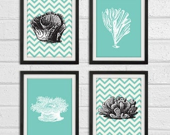 "Coral Series C Art Prints - Set of 4 8""x10"" Print"
