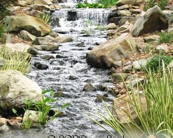 """021 """"Majestic Waterfall"""""""
