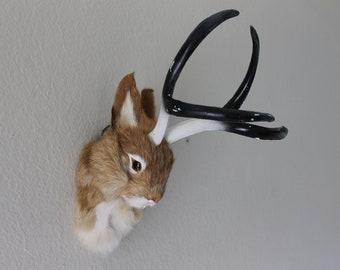 Tan Brown Jackalope Head Mount Rabbit with Antlers Furry Animal Figurine Cabin Decor
