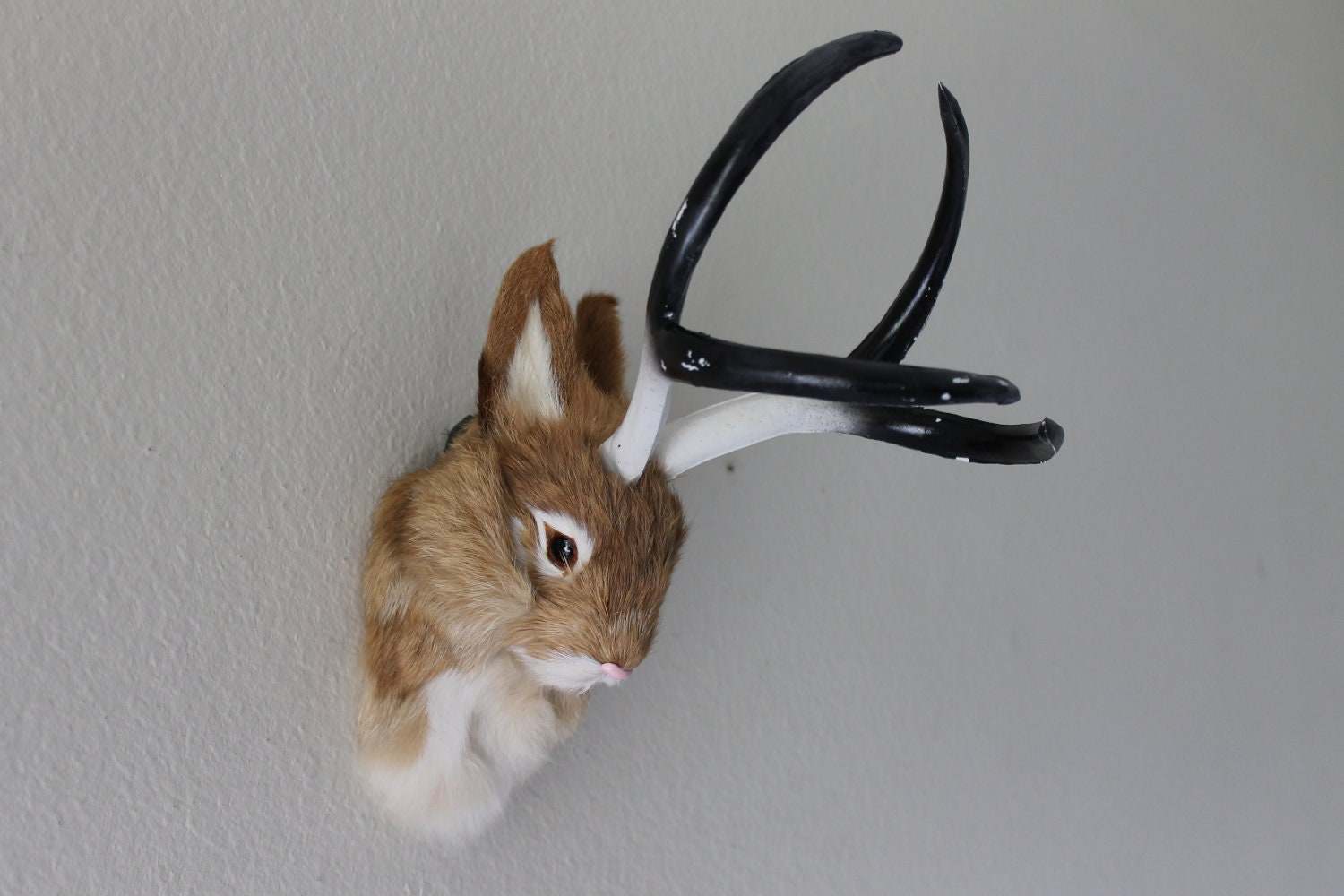Tan Brown Jackalope Head Mount Rabbit With Antlers Furry