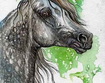 Grafik polish arabian horse watercolor painting